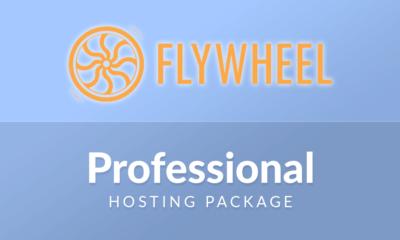 Flywheel Professional