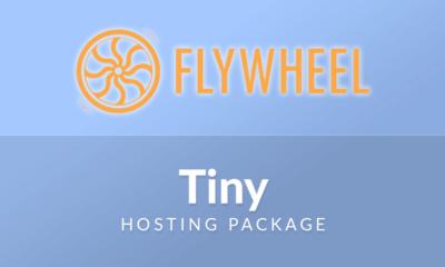 Flywheel Tiny